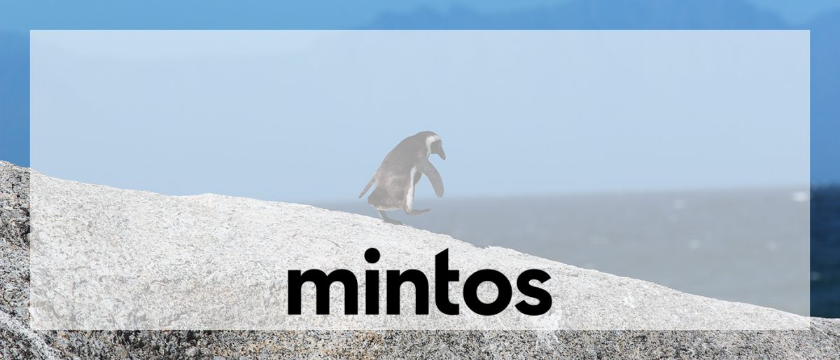 The first step in my passive income journey: Mintos