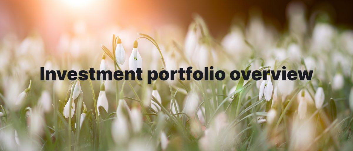 Investment Portfolio Overview February 2020