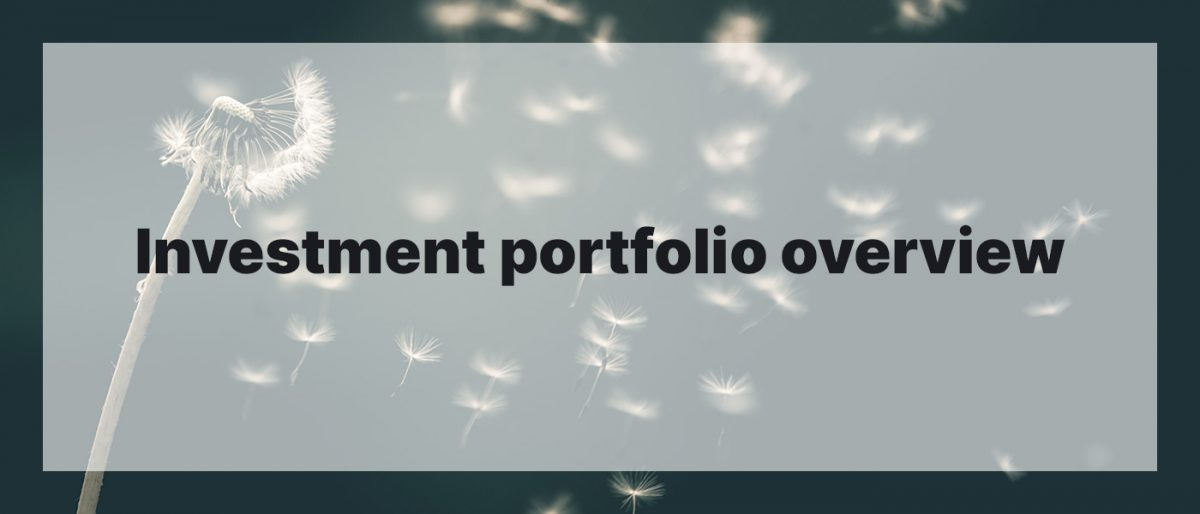 Investment Portfolio Overview May 2020