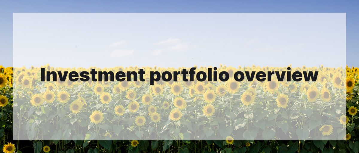 Investment Portfolio Overview July 2020