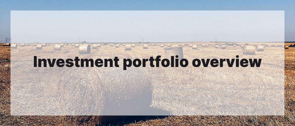Investment Portfolio Overview August 2020