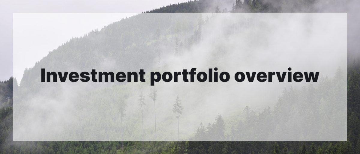 Investment Portfolio Overview November 2020