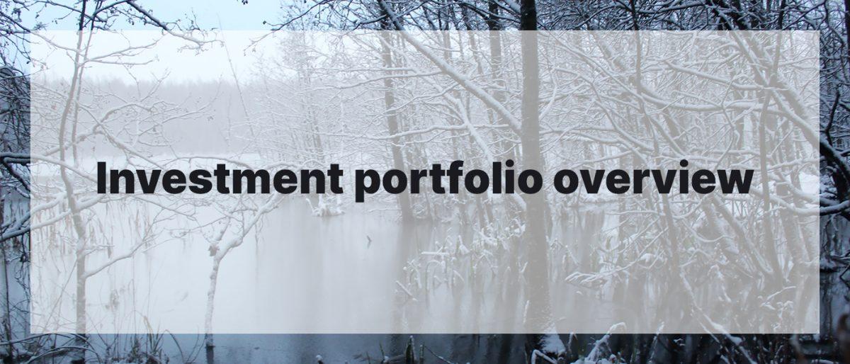 Investment Portfolio Overview December 2020