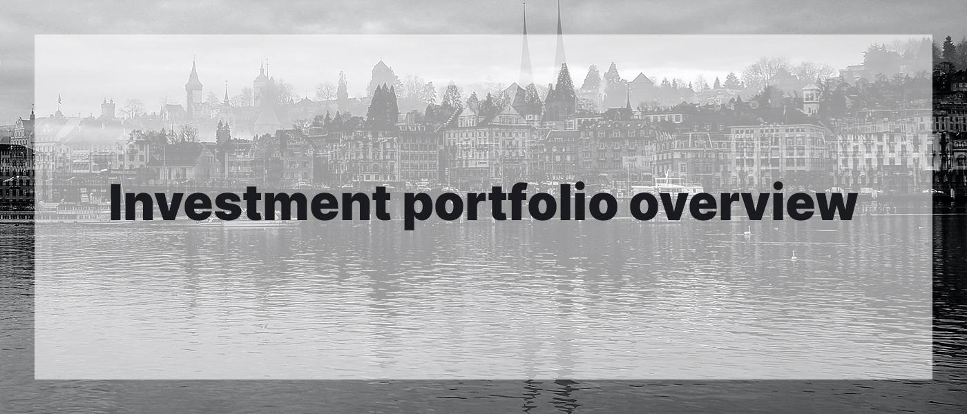 Investment Portfolio Overview January 2021