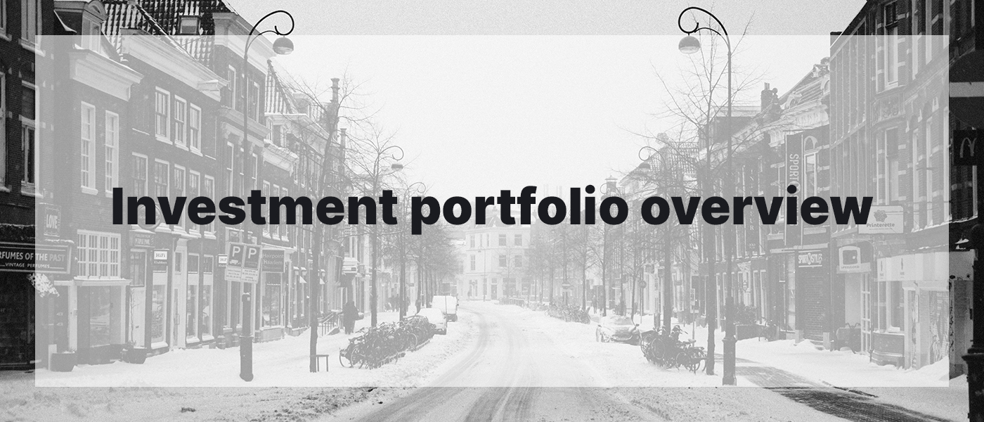 Investment Portfolio Overview February 2021