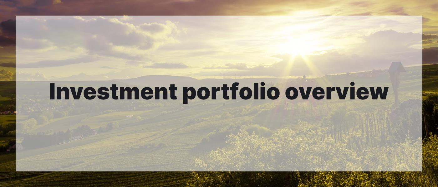 Investment Portfolio Overview March 2021