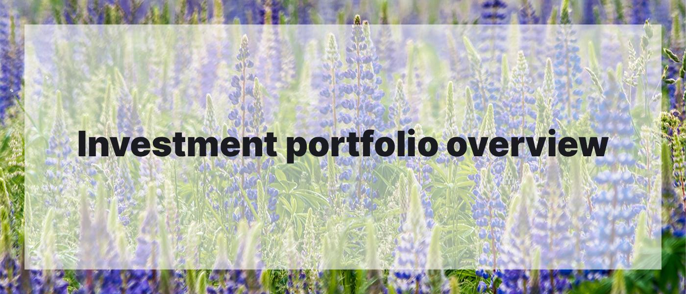 Investment Portfolio Overview April 2021