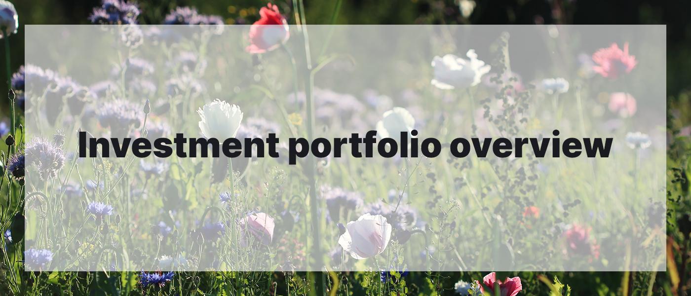 Investment Portfolio Overview June 2021