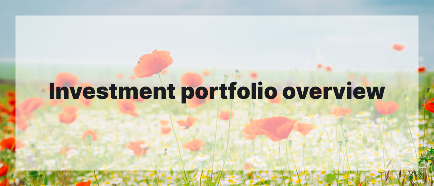 Investment Portfolio Overview May 2021